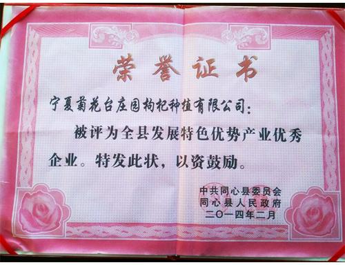 菊花台庄园--同心县发展特色优势产业优秀企业