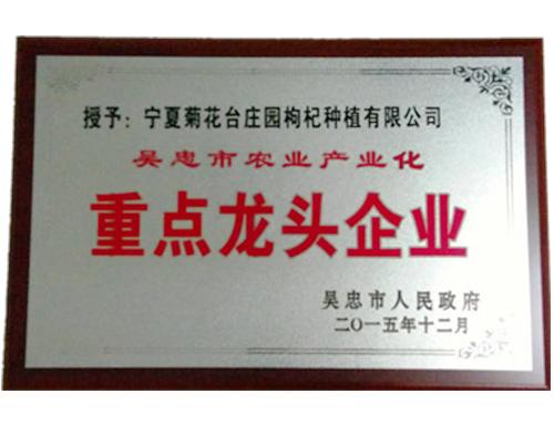 菊花台庄园--荣获吴忠市重点龙头企业
